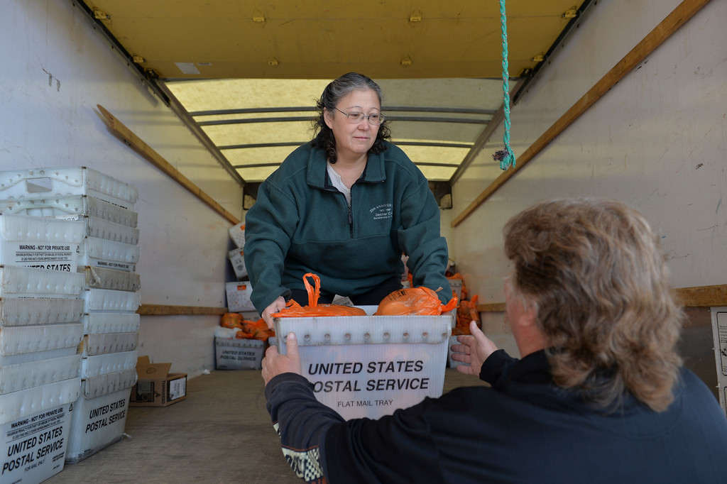 Justin Sheely | The Sheridan Press<br /> Food Bank volunteer Sandy Nicholson moves donations collected by the US Post Office to the end of the truck Friday at the People Assistance Food Bank. The US Post Office in Sheridan collected more than 10,000 pounds of food from their 25th annual food drive, which was collected by mail carriers from the community earlier this week. The donations from the community was split between the Salvation Army in Sheridan and People Assistance Food Bank.