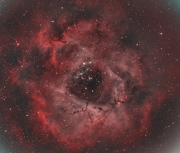 Rosette Nebula NGC 2244 (Caldwell 50) :  Bi-color capture in H-alpha and OIII. H-O-O