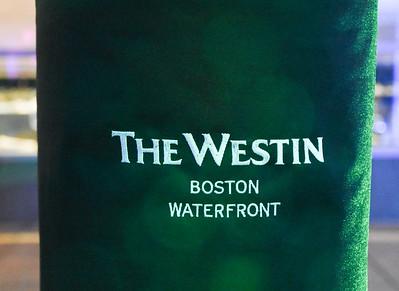 2018 City Year Boston Starry NIght