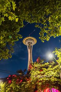 Seattle-8312