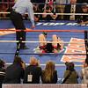 Boxing 2014 - Demetrius Andrade versus Brian Rose