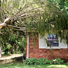 Don Knight   The Herald Bulletin<br /> A tree top rests on the roof of a home on Mapelwood Avenue which saw the brunt of the storm damage as storms moved through early Thursday morning.