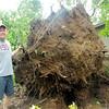 Stu Hirsch   The Herald Bulletin<br /> Storm damage