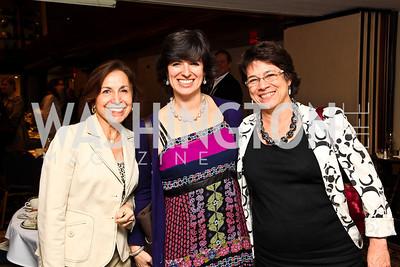 Carlotta Hartmann, Danielle Brian, Beth Schulman. 8th Annual Ridenhour Prizes. Photo by Tony Powell. Press Club. April 13, 2011