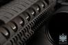2012-1201a 14 (_DSC0061) AR-15 (watermark)