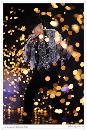 Aaron Kwok Concert 2011