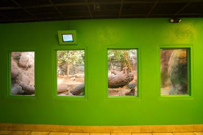 Green display 07375