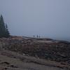 Foggy coastline at Wonderland 2.