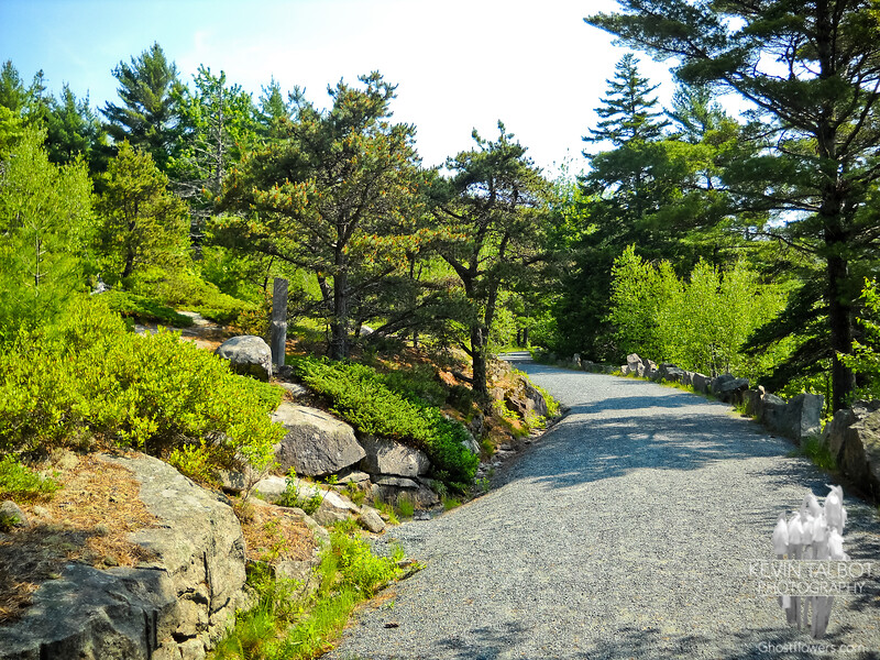 Trail to Parkman Mountain starts out on a Carriage Road.