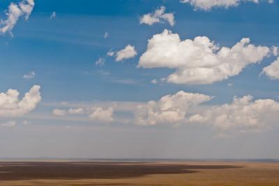 Africa Day 12 (Serengeti)