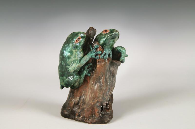 sn816. Tree Frogs