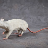 White Rat No. 1