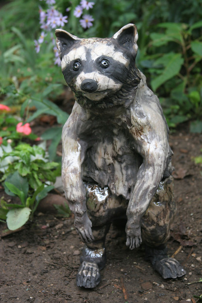 """Raccoon. 18""""h x 8""""w x16""""d; paperclay, raku."""