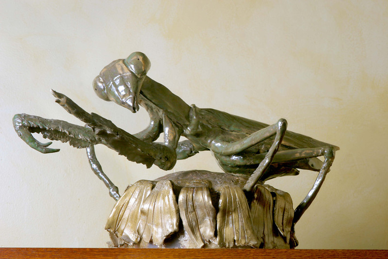 "Praying Mantis.15""h x 20""w x27""d; paperclay. (NFS)"