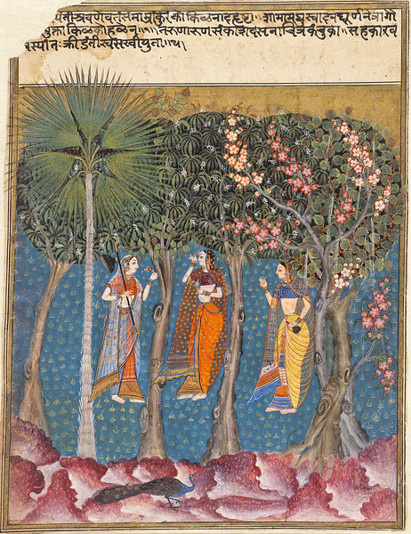 Gauri Ragini: A Maiden Picking Blossoms from a Tree; Ragamala; Gauri Ragini