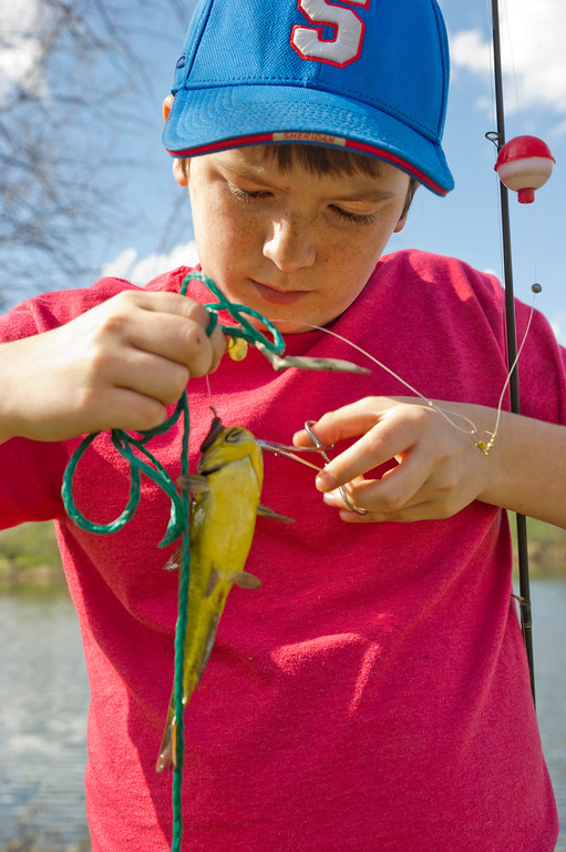 Leif Norskof, 12, pulls his hook out of a Bullhead fish caught Wednesday, May 8, 2013, at Sam Mavrakis pond in Sheridan. Norskof said that he likes to fish here at lot. (The Sheridan Press/Justin Sheely)