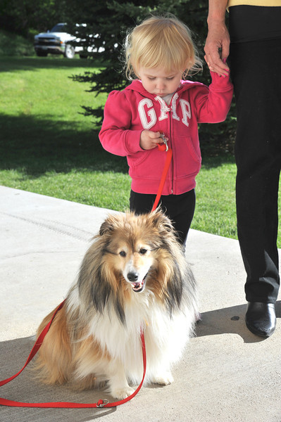 Molly Sheeley, 2, holds a leash for Sophie, a Shelty, as she and her grandmother Keren Dehn wait in line for the Dog and Cat Shelter Rabies Clinic Tuesday at Kendrick Park.