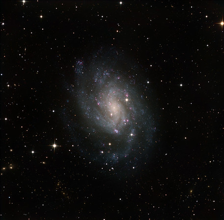 "NGC 300 in Sculptor, a near-face-on barred spiral, very bright at mag 8.3, and very close and large on the sky, so of low surface brightness. Thought to be gravitationally bound to NGC 55, interations with which might explain why it is so blue. Squillions of tiny blue pinprick OB regions mark out the spiral arms. There are half a dozen or so red rings (HII regions). The background is worth exploring, with huge numbers of distant galaxies, many very reddened, some forming galaxy clusters. Notice the long tidal tail on the seahorse-like galaxy toward ten o'clock.  Lum: 10 x 1hrs unbinned; RGB: each channel 4 x 1hrs 2x2 binned. Total exposure 22 hrs. Aspen CG16M on 20"" PlaneWave CDK on MI-750 fork."