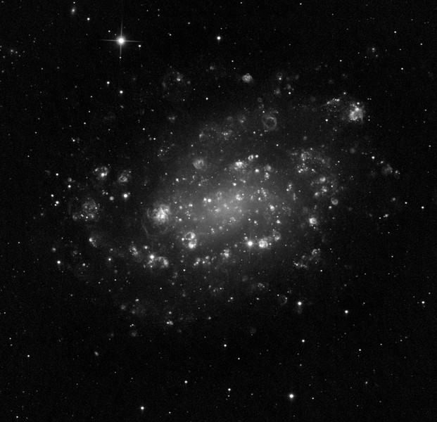 "NGC 300 in Hydrogen alpha. The spiral arms of the galaxy are alive with little Tarantulas, Eta Carinae nebulas, and M42's, all wanting to scuttle off the page. Thirteen hrs exposure (1hr 2x2 binned subs). Aspen CG16M on 20"" PlaneWave CDK."
