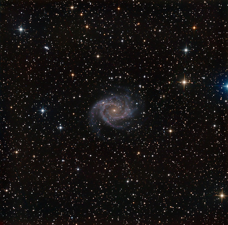 "NGC 2997 face-on spiral in Antila. L 6hrs. RGB 2hrs each. Zooming in to individual pixels, you will see that the nucleus of 2997 is most unusual, with a tiny bright orange dot for the core, plus three tiny bright blue star-forming regions around it. The surroundings are rather lonely and less rewarding, but with persistence you can count about 70 tiny background galaxies, some with recognizable form. Aspen 16M on PlaneWave 20"" CDK on MI-750."