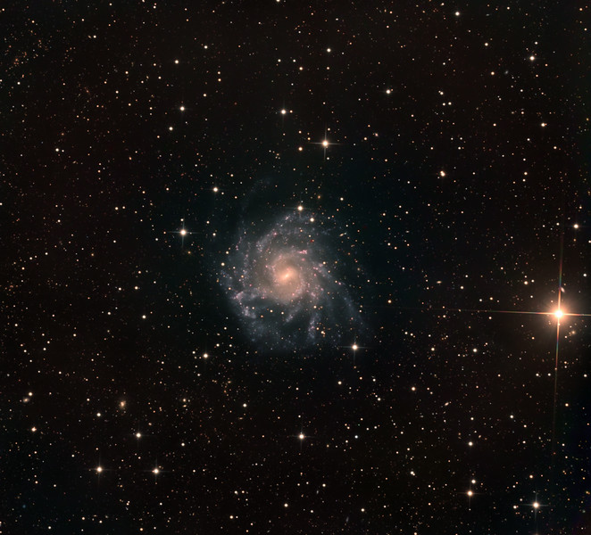 "NGC 7424, a starburst grand design spiral in Grus. With a surface brightness of only 15 mag/sq min, this is a faint target. The brilliant K class orange star at 3 o'clock is magnitude 6.7.  We call the galaxy ""Chopin"", on the grounds that the multiple spiral arms look like someone playing a frenetic arpeggio on the keyboard. There are many distant orange elliptical galaxies, often in clusters.  Lum: 15hrs in 1hr subs. RGB: 3hrs each in half hour 2x2 binned subs. Aspen CG16M on 20"" PlaneWave. Field approx 35' across."
