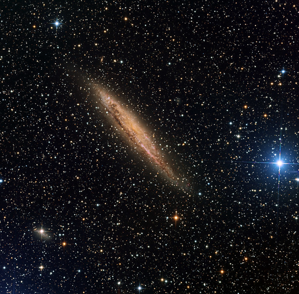 "NGC 4945, a distorted near edge-on dusty spiral galaxy itself obscured by Milky Way dust, giving it an orange overall colour. <br /> <br /> The very bright blue star at 4 o'clock is xi 1 Centauri, spectral class A0. Xi 2 is just off-frame.<br /> <br /> See also the irregular galaxy hidden behind the bright star toward 8 o'clock, and the still more distant spiral close in toward 2 o'clock. The latter's brightness has been locally enhanced for clarity. Despite the obscuring Milky Way material, many other tiny background galaxies are visible.<br /> <br /> Lum 13hrs in 1hr subs. RGB 11hrs each in 30min subs. Aspen CG16M on 20"" PlaneWave."