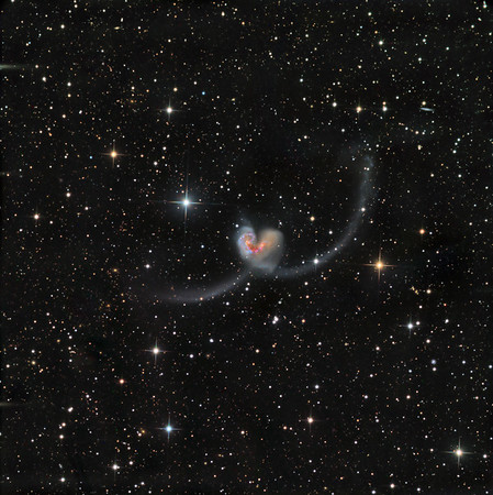 "The Antennae in Corvus. A pair of interacting galaxies with spectacular tidal tails and severe central disruption triggering massive star formation.   L 10hrs, RGB 3 hrs each, all in 1hr unbinned subs. Field 36 min arc. Aspen CG16M on 20"" PlaneWave. This galaxy is almost implausibly colourful. We have actually desaturated this image a bit."