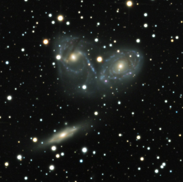 Tight crop of Devil's Mask interacting spiral galaxies NGC 6769-70 and edge-on barred spiral NGC 6771. Field is only 9 min arc across. Notice the dust lanes of 6770 have been twisted up and over the galaxy, as if it has been through an egg beater. See the blue spiral arm pulled straight like a tidal tail. The boxy bar of 6771 appears almost  X-shaped in profile. L 13 hrs, RGB 2.5 hrs each.