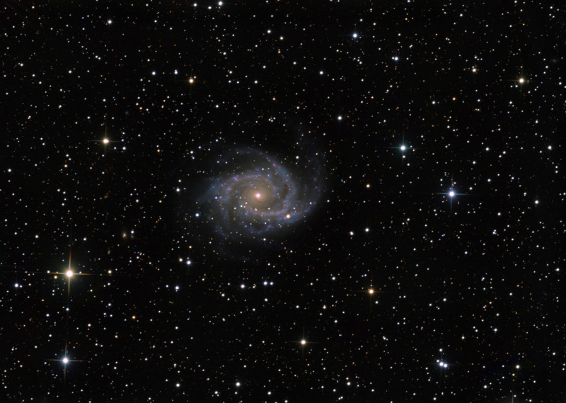 """NGC 2997 in Antlia. A close examination of the nucleus shows four separate blue cores, a kind of mini galactic trapezium. A hunt around will reveal quite a few very small background galaxies.  Detail from 4 hours clear filter, on a night of for-us-very-good (2 sec arc) seeing, and colour from 2 hrs each 2x2 binned R, G, and B, on a shocking night with stars jumping out of their guide boxes. In the morning we realized we'd been photographing through thickish altostratus.   Ageing STL-11000M on 20"""" PlaneWave on MI-750 fork. All control electronics, firmware, and software, including image processing software, by me."""