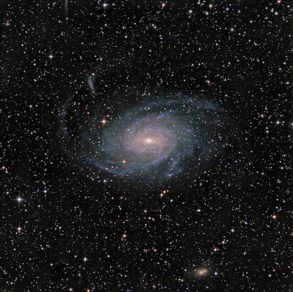 "NGC 6744 in Pavo. <br /> Lum 16.5hrs, RGB 2.5 hrs each, all in 30 mi subs. <br /> Aspen CG16M on 20"" PlaneWave."