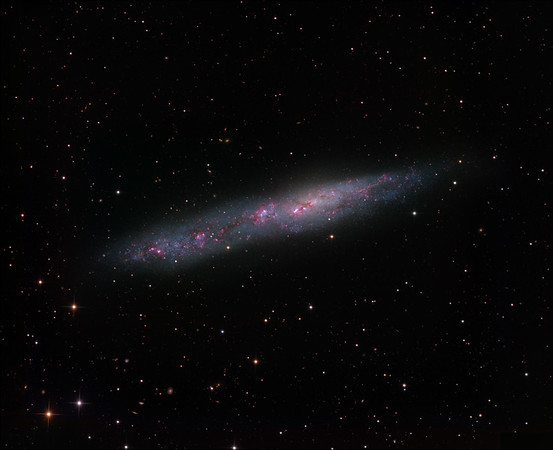 Nine hours of H-alpha (in 1 hr unbinned subs) have been added to the previous image of NGC 55 (L 28, RGB 4 hrs/channel, in 30 min unbinned subs). H-alpha was mapped to red, the H-alpha and LRGB images averaged, and the red channel adjusted to restore colour balance to the H-alpha poor regions of the galaxy.