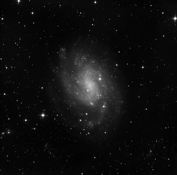 "NGC 300 is a very large, very bright face on barred spiral in Sculptor. Easy to photograph fine sharp detail of myriad OB regions because of its closeness, but difficult overall because of the low surface brightness. The field shows squillions of tiny background galaxies.<br /> <br /> Lum: 10hrs in 1hr unbinned subs. Aspen CG16M on 20"" PlaneWave CDK on MI-750. As usual, all observatory control and image processing done using our own software."