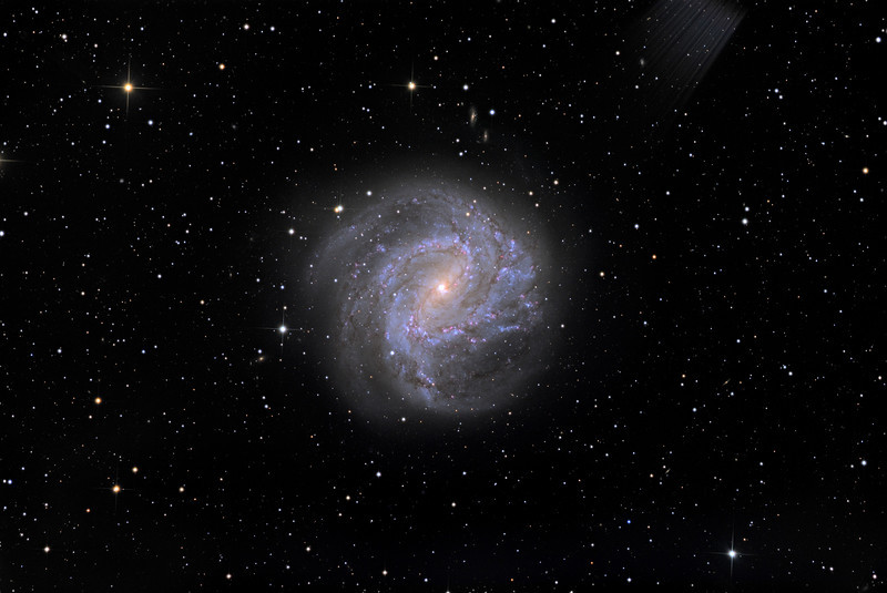 "M83, a very bright nearby face-on spiral. Note salmon-pink core of older stars, bright blue clusters of hot young OB stars in the spiral arms, and fine dust lanes. An explore of the full-size image will show very many background galaxies.  Exposure details gone forever but of the order of L6h, RGB 1.5h.  STL11000M on 20"" PlaneWave CDK on modified MI-750 fork. All software, firmware, and electronics is my own design and build."