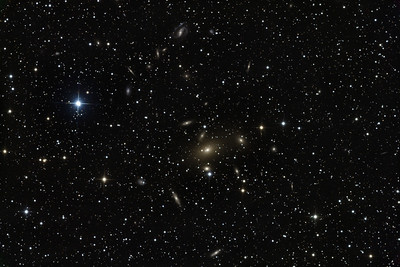 """Galxy cluster Abell South 805 in Pavo, centred on the big orange elliptical  IC4765. The big blue star is 8 mag SAO254375. A very casual glance sees at least 66 galaxies in this image, most showing form (as the chief inspector would have said). Note the beautiful faint face-on barred spiral at 12 o'clock showing intense blue star formation in the top arm, the edge-on barred spiral with the boxy, almost x-shaped bar seen in profile, and the dozens of thin edge-on spirals in the background.  Clear: 7x1 hr subs. RGB 30mins each. STL11000M on PlaneWave 20"""" CDK on MI-750 fork."""