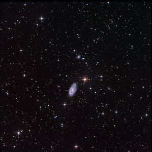 """NGC 7205 in Indus, and at well over 180 other galaxies. There appears to be a cluster of orange ellipticals about 70% of the way toward 1 o'clock, and another smaller cluster about 30% of the way toward 9 o'clock.  Luminance: 7x1hr subs on a night of exceptional seeing. Colour: 2x1hr subs each R, G, B. Field 36' arc.  Aspen CG16M on 20"""" PlaneWave. Processing with our own GoodLook 64."""