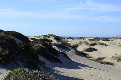 Sand Dunes at Guadalupe Dunes Preserve, CA