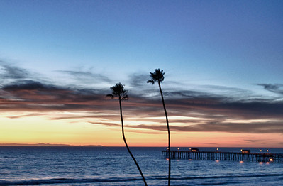 Two Palms overlooking San Clemente beach, CA