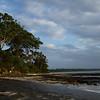 Dawn at Husky (Huskisson) Jervis Bay Australia