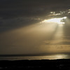 Peeking from heaven at Huskisson, Jervis Bay Australia