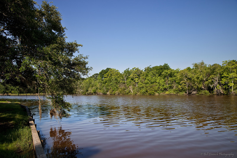 Petite Anse Bayou runs along the western edge of Avery Island