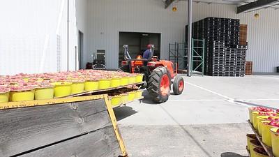 Tractor Pulling Bucket Trailer