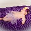 Ailie_McDougall_newborn_PRINT_Enhanced--20