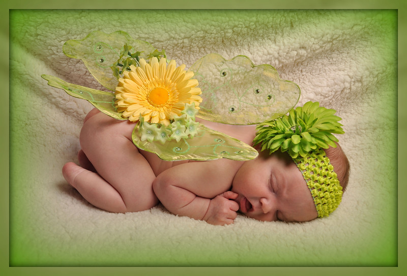 """<font style=""""font-weight: bold;"""" size=""""+2""""><span style=""""font-family: Arial; color: rgb(255, 102, 0);"""">Baby Showcase $349</span></font><big><br> </big><br> <small><small><small><span style=""""font-family: Arial;""""><big><big><big><big><big><small>Using our natural, artisitic style, we will showcase your baby by capturing beautiful milestone moments in her/his life. Poses and outfit changes are only limited by what we can capture during the session. This package includes a digital download of high-resolution images selected by Brighter Images Photography.</small></big></big></big></big></big></span></small></small></small><big><span style=""""font-family: Arial; font-style: italic;""""><br> </span></big>"""