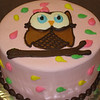 Look Whoo's here baby shower cake in buttercream
