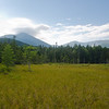 Across the bog to Katahdin.