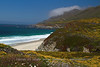Fog Clears above Garrapata Beach Gold