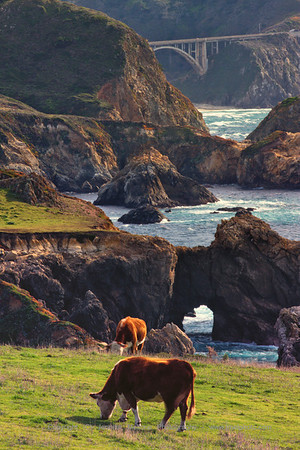 Bovine Arch by Rocky Creek Bridge