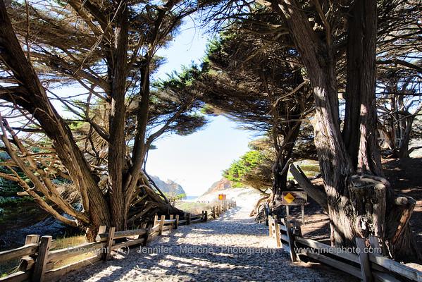 Walking Through the Magic Tunnel to Pfeiffer Beach