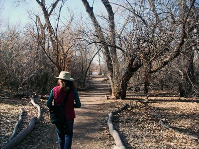 walking trail, Rio Grande Nature Center, Albq