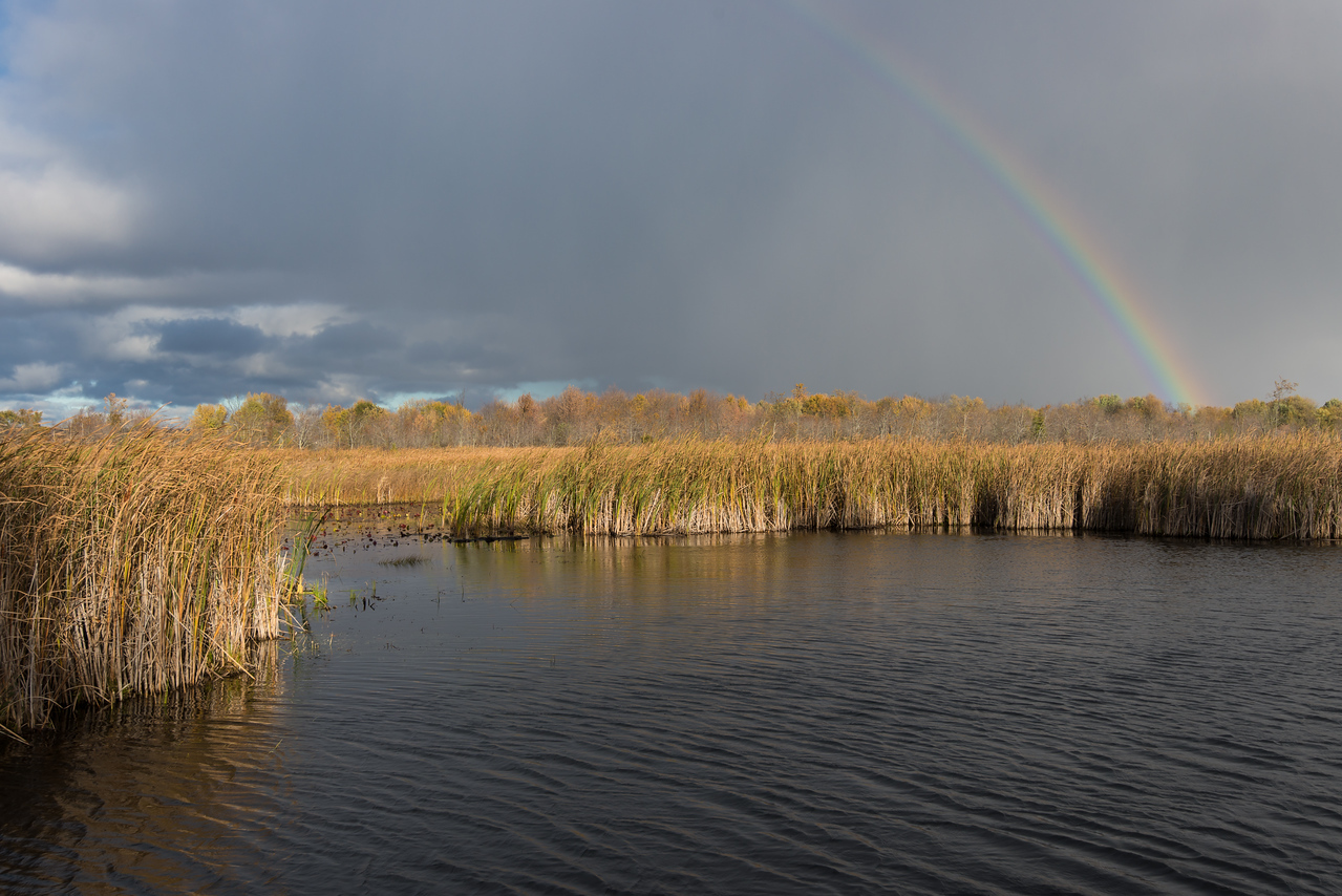 View of half rainbow from dock - October 2015